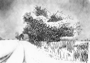 carole-bury-winter-and-the-holly-trees-charcoal-300x209